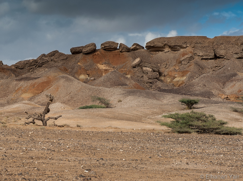 pictures of the ARAVA in a winter day
