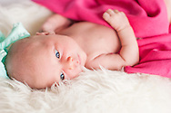 28 day old newborn girl laying on a fluffy rug, wearing a turquoise headband and covered in a pink scarf.
