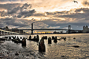 Dock remains popping out of the East river in the South East of Manhattan, at sunrise, New York.