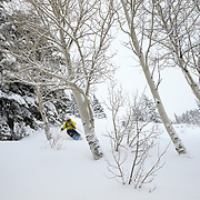 Andrew Whiteford finding powder in the Lower Faces aspen trees at Jackson Hole Mountain Resort.