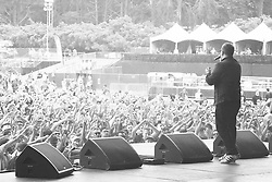 Run The Jewels perform at the 2014 Outside Lands Music and Art Festival - San Francisco, CA - 8/8/14