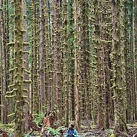 Hoh Rainforest, Olympic National Park, Washington, USA
