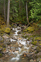 Pyramid Creek, Ross Lake National Recreation Area, North Cascades Washington