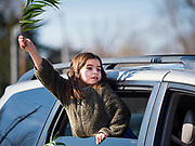 "05 APRIL 2020 - DES MOINES, IOWA:  LORELEI KOWLESSAR, 6, waves her palm branch during a drive through Palm Sunday service sponsored by Luther Memorial Church on the campus of Grand View University in Des Moines. About 150 people attended the service. They remained in their cars while the ministers read a short passage from the Bible, handed out palms and blessed them. On Sunday, 05 April, Iowa reported 868 confirmed cases of the Novel Coronavirus (SARS-CoV-2) and COVID-19. There have been 22 deaths attributed to COVID-19 in Iowa. Restaurants, bars, movie theaters, places that draw crowds are closed until 30 April. The Governor has not ordered ""shelter in place"" but several Mayors, including the Mayor of Des Moines, have asked residents to stay in their homes for all but essential needs. People are being encouraged to practice ""social distancing"" and many businesses are requiring or encouraging employees to telecommute.        PHOTO BY JACK KURTZ"