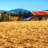 Barn in Northwest Portland