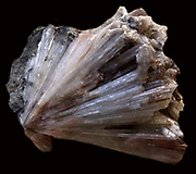 Thomsonite crystals. A tecto-silicate mineral series from the zeolite group. Each grouped crystal is long and blade-like, with the effect of radiating prisms.