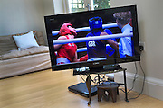 For most the television was the main source of Olympic viewing. On the screen Nicola Adams makes history as she floors world champion Ren Cancan from China and wins gold becoming the first British woman to ever do so.