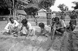 BANGLADESH DINAJPUR OCT94 - Shanti, an NGO worker for Dipshikha instructs a teacher and children in planting a vegetable garden next to their pre-school in rural Dinajpur, northern Bangladesh. Establishing vegetable gardens is a vital part of practical education, as a balanced and vitamin-rich diet can prevent adolescent blindness common in rural areas of Bangladesh...jre/Photo by Jiri Rezac..© Jiri Rezac 1994