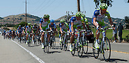 Team Liquigas-Cannondale riders lead the Amgen Tour of California peloton along Vallecitos Road as they enter Livermore, Cailf., for the first time on Tuesday, May 15, 2012. The race began in Santa Rosa on May 13 and ends Sunday in Los Angeles.  The peloton was about 4 minutes behind the four leaders. (Cindi Christie/Staff)