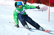"""Schladming, Austria - 2017 March 21: Jonny Jara from Chile (108) competes in Alpine Skiing Competition while Special Olympics World Winter Games Austria 2017 on the """"Sepp-Walcher-Downhill"""" (Slope 32) near the """"Tauernalm"""" in Rohrmoos on March 21, 2017 in Schladming, Austria.<br /> <br /> Mandatory credit:<br /> Photo by © Adam Nurkiewicz / Mediasport<br /> <br /> Adam Nurkiewicz declares that he has no rights to the image of people at the photographs of his authorship.<br /> <br /> Picture also available in RAW (NEF) or TIFF format on special request.<br /> <br /> Any editorial, commercial or promotional use requires written permission from the author of image.<br /> <br /> Image can be used in the press when the method of use and the signature does not hurt people on the picture."""