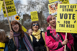 Around 100 beekeepers join the march on DEFRA together with celebrities including Vivienne Westwood, Katharine Hamnett, Rachel Whiteread urging Owen Paterson to not block the EU proposal to suspend the use of certain pesticides, Parliament Square, Westminster, London, UK, April 26, 2013. Photo by: Daniel Leal-Olivas / i-Images