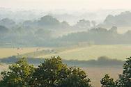 Mist over Kentish landscape at dawn, fields