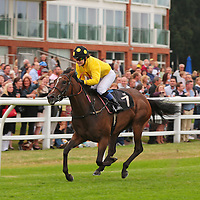 Lingfield 17th August 2013