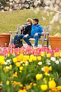 20110420 Spring Staff Blooms