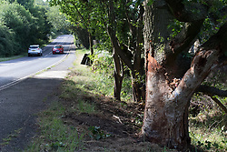 © Licensed to London News Pictures. 17/07/2017. Baxterley, North Warwickshire UK. Three people were killed in Baxterley, North Warwickshire when the BMW car they were in hit a tree. It is believed 2 18 year old males died along with a 19 year old female. Pictured, The Common where the accident took place.  Photo credit: Dave Warren/LNP