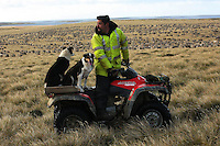 Jaime Camblor, a Chilean worker, rounds up sheep on a 4X4 in Goose Green, in the Falkland Islands, on Friday, March 23, 2007. This year is the 25 anniversary of the war for sovereignty of the islands between the United Kingdom and Argentina. The two-month war resulted in the withdrawal of Argentinean forces and the islands remained part of the United Kingdom. After the war on the islands there has been strong economic development. (Photo/Scott Dalton)