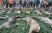 Duitsland, Marburg, 1-12-2013Jagers uit Nederland jagen in Duitsland op groot wild. Serie over limburgse jagers die inschrijven op jachtgelegenheden die het Duitse forstamt biedt. Afgebeelde personen zijn voornamelijk Duitsers.Volgens het Duitse Forsamt dient de jacht het behoud en bescherming van het natuurlijke bos-ecosysteem, het behoud van gezonde populaties wilde dieren, evenals de afweging van de belangen van de bosbouw en landbouw en het stimuleren van de ontwikkeling van soortenrijke bossen met het streven om wildschade te voorkomen.Foto: Flip Franssen/Hollandse Hoogte