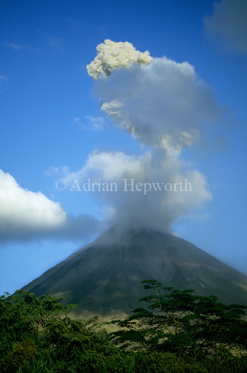 Arenal Volcano in eruption.  Costa Rica.<br /> <br /> For pricing click on ADD TO CART (above). We accept payments via PayPal.