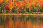 Autumn  colors reflected in Lac à Sam in the Laurentian Mountains. Great Lakes - St.  Lawrence Forest Region.<br />