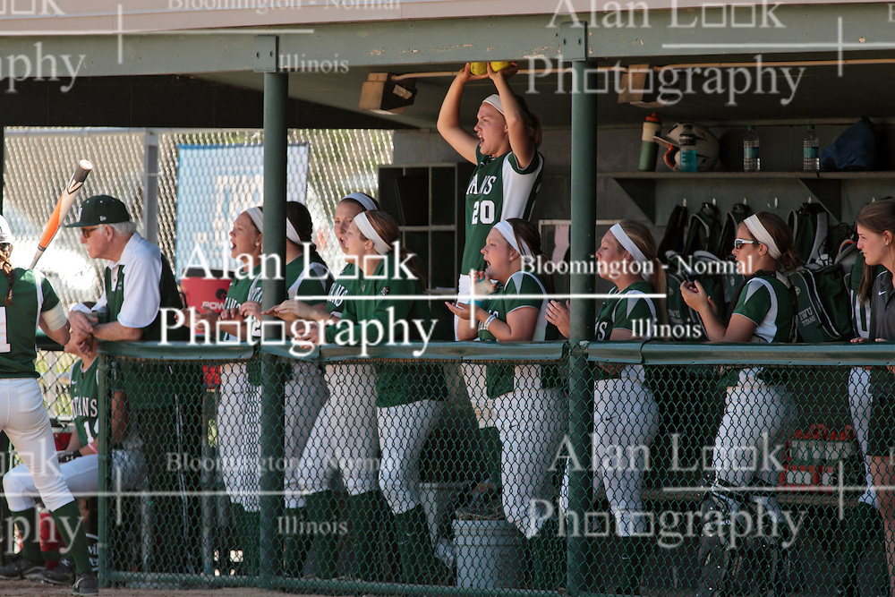 09 May 2014:  Titans chat from the dugout during an NCAA Division III women's softball championship series game between the Lake Forest Foresters and the Illinois Wesleyan Titans in Bloomington IL