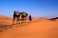 Ouarzazate - Atlas