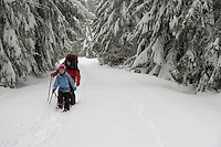 A mother and child snowshoe along the Rainier Vista Trail of Mount Tahoma Trails crosscountry ski and snowshoe trail system in the Washington state Cascade Mountain Range near Mount Rainier.