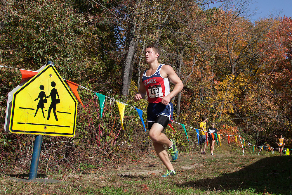 CTC cross-country championships held at   Gloucester County College in Sewell, NJ on Saturday October 20, 2012. (photo / Mat Boyle)