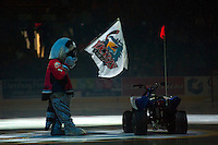 KELOWNA, CANADA - OCTOBER 11: Rocky Racoon, the mascot of the Kelowna Rockets stands on the ice on October 11, 2014 at Prospera Place in Kelowna, British Columbia, Canada.   (Photo by Marissa Baecker/Shoot the Breeze)  *** Local Caption *** Rocky Racoon;