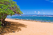 Larsen's Beach, North Shore, Island of Kauai, Hawaii