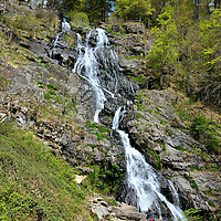 Todtnauer Waterfalls from Hiking Path in Todtnauberg, Germany <br /> It is a simple and beautiful hike to reach the Todtnauer Waterfalls.  This will be your first view as you turn a corner along a dirt path.  After you enjoy the waterfalls, leave plenty of time for other outdoor adventures around Todtnauberg, including hiking and cycling in the summer and skiing in the winter.  The Feldberg mountain is nearby.  At nearly 5,000 feet, it is the tallest in the Black Forest.