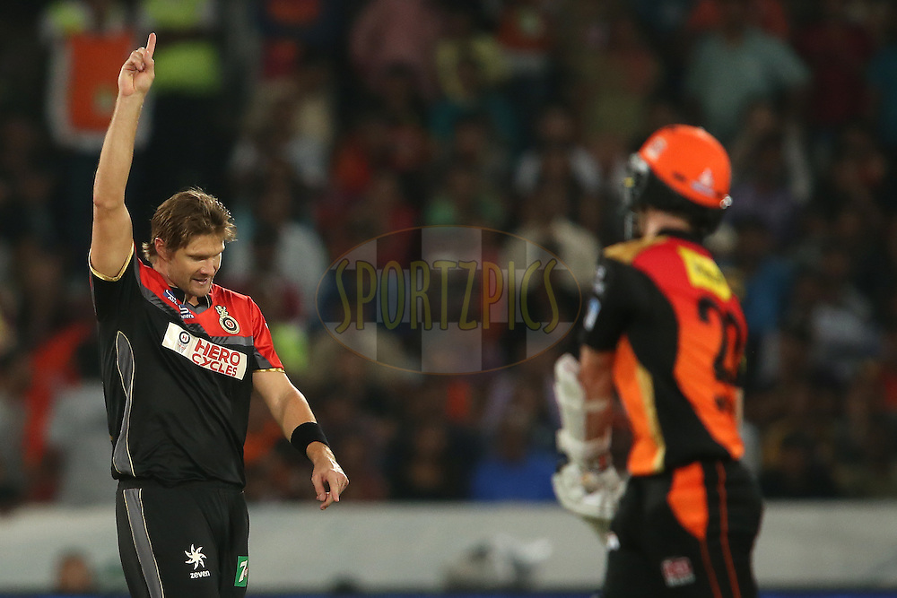 Shane Watson of Royal Challengers Bangalore celebrates getting Kane Williamson of Sunrisers Hyderabad wicket during match 27 of the Vivo IPL 2016 (Indian Premier League) between the Sunrisers Hyderabad and the Royal Challengers Bangalore held at the Rajiv Gandhi Intl. Cricket Stadium, Hyderabad on the 30th April 2016<br /> <br /> Photo by Shaun Roy / IPL/ SPORTZPICS