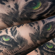 Luis Andrade showing his tattoo of tigers eyes on his arm.<br /> <br /> Body art or tattoos has entered the mainstream it is no longer considered a weird kind of subculture.<br /> <br /> &quot;According to a 2006 Pew survey, 40% of Americans between the ages of 26 and 40 have been tattooed&quot;.