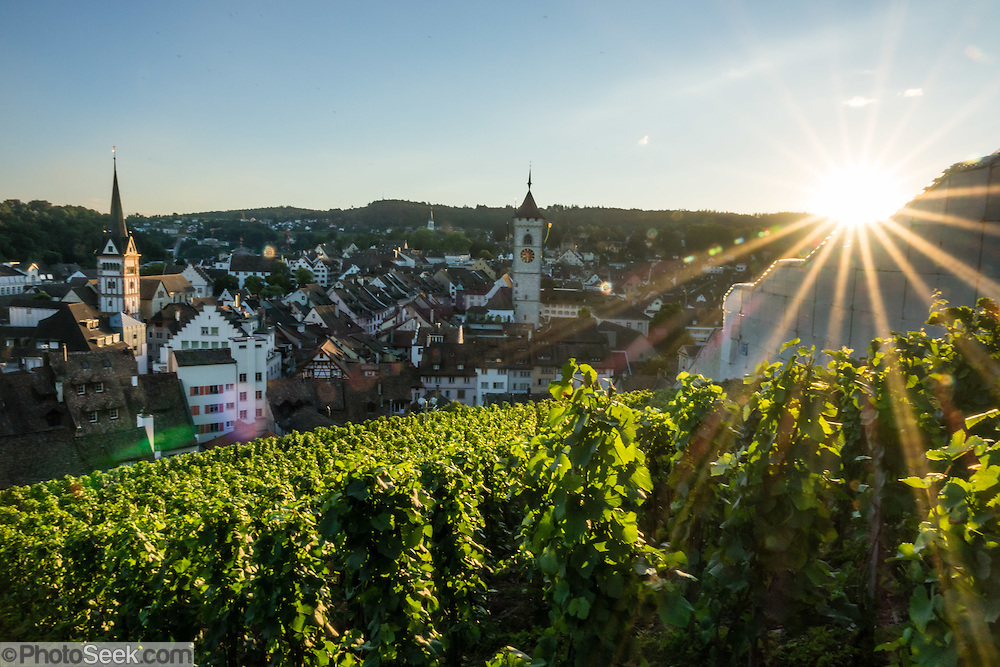 At sunset seen from the Munot fortress, admire a panorama of vineyards and Schaffhausen's Old Town, a patchwork of rooftops and spires, in Switzerland, Europe. Left to right are the church steeples of Münster (first built 1064) and St Johann.