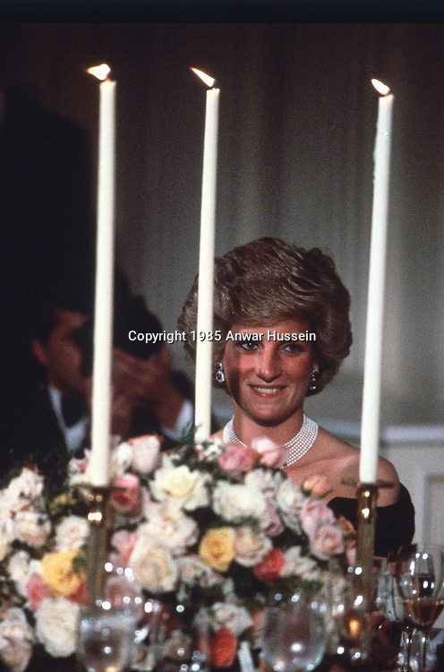 WASHINGTON, USA - NOVEMBER 09:  Princess Diana, Princess of Wales attends a banquet at The White House on November 09, 1985 in Washington, USA.  (Photo by Anwar Hussein/Getty Images) *** Local Caption *** Diana, Princess of Wales