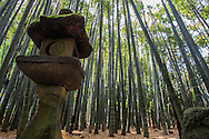 "Hokokuji Bamboo Garden, sometimes call ""the Bamboo Temple"" because of its large bamboo grove, was once the family temple of both the Ashikaga and Uesugi clans. The temple and its gardens were established by Zen scholar and monk Tengan Eko, posthumously named Butsujo Zenji."
