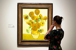 © Licensed to London News Pictures. 25/03/2019. A Tate member of staff views a painting titled Sunflowers (1888) by artist Vincent van Gogh. The painting is part of The EY Exhibition: Van Gogh and Britain at the Tate BritainLondon, UK. Photo credit: Ray Tang/LNP
