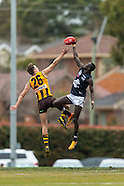 Rd17 Development vs Box Hill Hawks