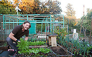 Los Angeles, California: Architect Tom Houlden in his plot at the Wattles Community Garden (Photo:  Ann Summa).