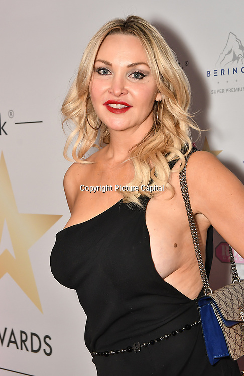 Heather Bird attend the BritAsiaTV Presents Kuflink Punjabi Film Awards 2019 at Grosvenor House, Park Lane, London,United Kingdom. 30 March 2019