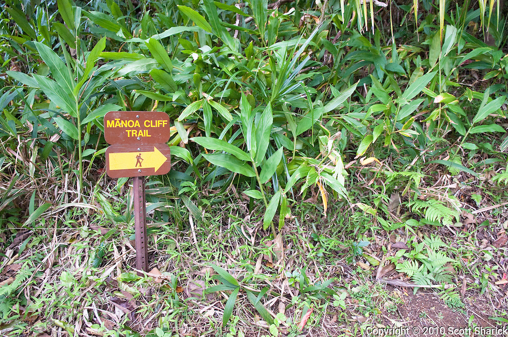 A sign pointing the way on the Manoa Cliff Trail.