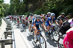 Rebecca Carter (GBR) of Team WNT rides mid-pack on Stage 1 of the Lotto Thuringen Ladies Tour - a 124.8 km road race, starting and finishing in Schleiz on July 13, 2017, in Thuringen, Germany. (Photo by Balint Hamvas/Velofocus.com)