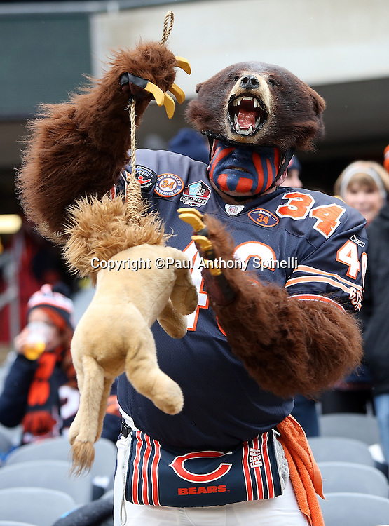 A Chicago Bears fan wearing a bear costume holds up a stuffed lion doll on a rope during the Chicago Bears NFL week 17 regular season football game against the Detroit Lions on Sunday, Jan. 3, 2016 in Chicago. The Lions won the game 24-20. (©Paul Anthony Spinelli)