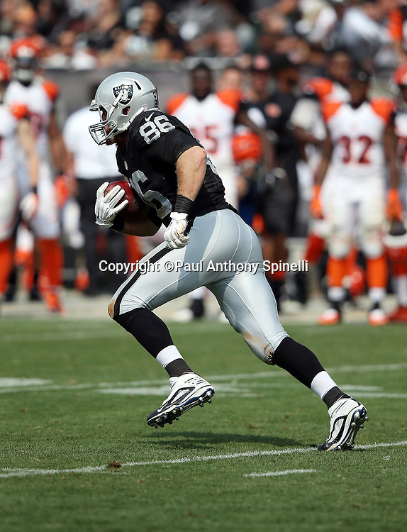 Oakland Raiders tight end Lee Smith (86) goes out for a pass during the 2015 NFL week 1 regular season football game against the Cincinnati Bengals on Sunday, Sept. 13, 2015 in Oakland, Calif. The Bengals won the game 33-13. (©Paul Anthony Spinelli)