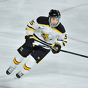 AIC vs UMass Hockey