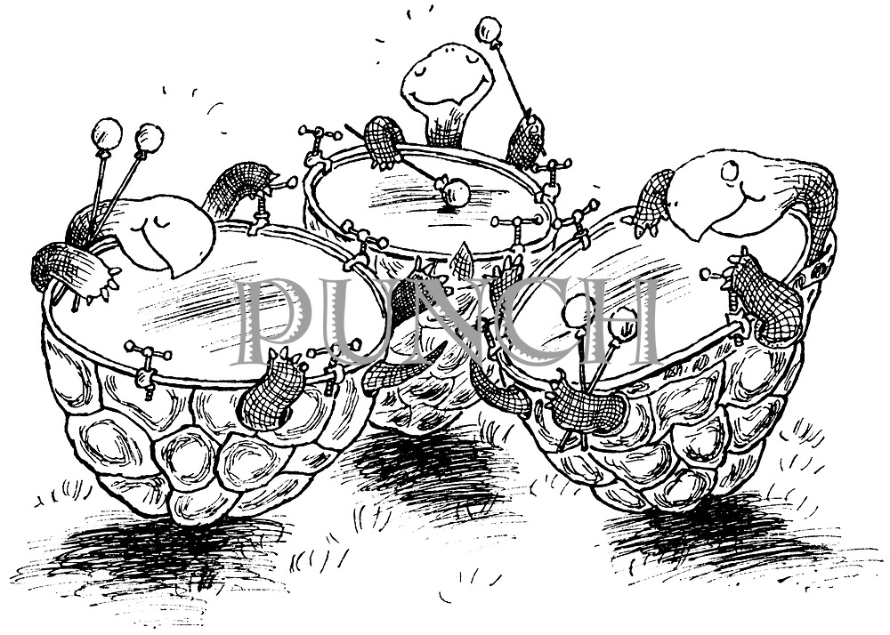 Hoffnung's Menagerie. (Tortoises transformed into kettle drums)