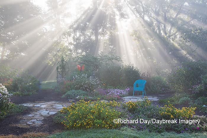 63821-23705 Sun rays in fog in flower garden, Marion Co., IL