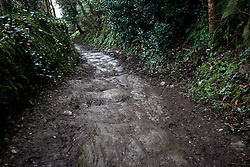 UK ENGLAND FOWEY 19FEB15 - Path leading to St. Catherine's Castle near Fowey, Cornwall, England. Fowey, a small fishing and harbour village was the living place of famous English writer Daphne Du Maurier and many of her novels are based here.<br /> <br /> jre/Photo by Jiri Rezac<br /> <br /> © Jiri Rezac 2015