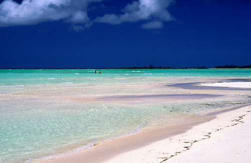 white sand beach & light aqua water; tropical; serene; peaceful; Gilliam Bay; Green Turtle Cay; Islands of the Bahamas; spring