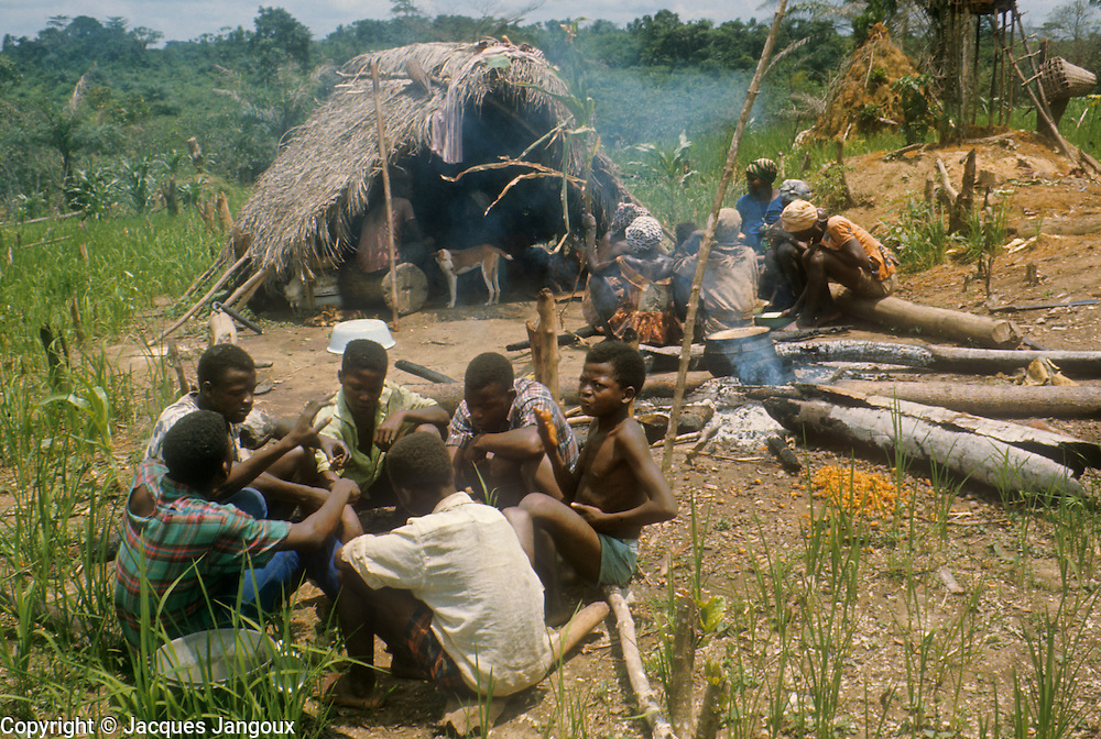 Africa, Liberia. Kpelle tribe. Lunch during communal work in the field by Kpelle men and women, forming separate groups. The Kpelle language belongs to the Niger-Congo language family, subfamily Mande.
