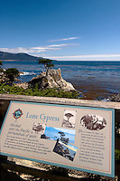 The Lone Cypress Tree Scenic Viewpoint Tourism Sign, Pebble Beach, California